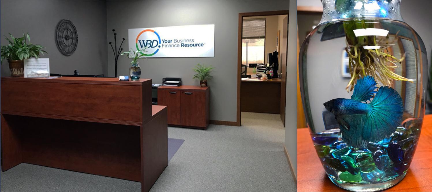 WBD-Eauclaire-Office-Mascot